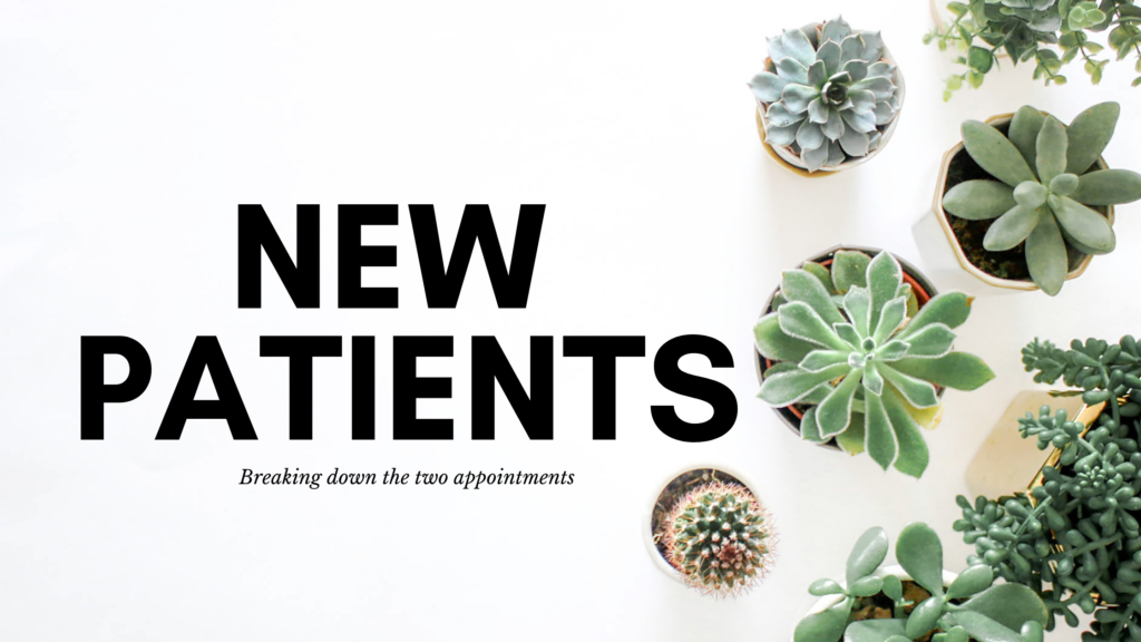 """Text reads """"New Patients breaking down the two appointments"""" with white background and a grouping of potted succulents seen from above"""