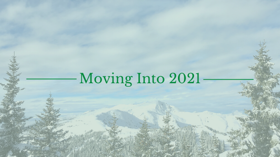 blog banner moving into 2021 with snowy mountain landscape background